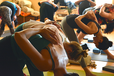 Fields of Yogis expands offerings for fest that begins Friday