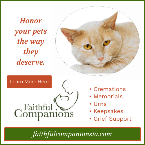 faithful companions 2
