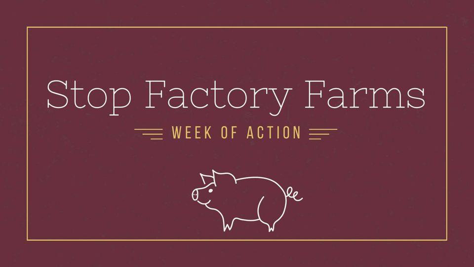 Stop Factory Farms