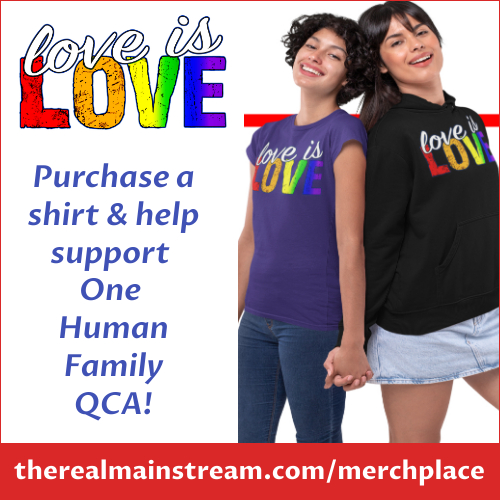 Love is Love shirt and hoody sales campaign